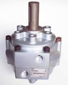 Cilindro pneumático (modelo: PRN300S280-40)